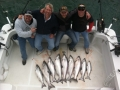 A great guy's outing with a bunch of King Salmon