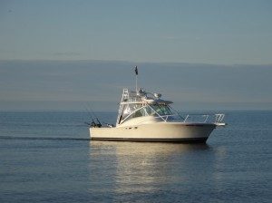Lake Ontario Fishing Charters-Luhrs 32 Open